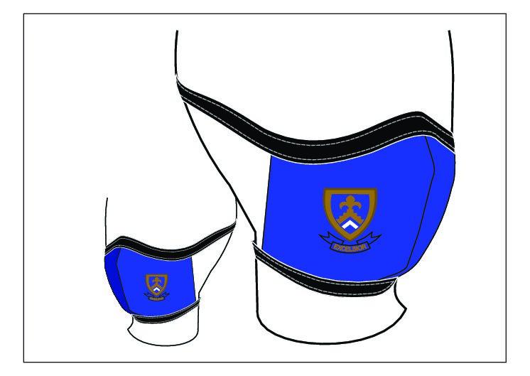 Excelsior Masks – Blue